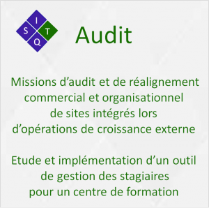 Web audit new